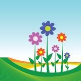 Bloemillustratie op blauwe achtergrond Royalty-vrije Stock Afbeeldingen