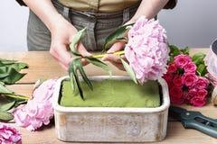 Bloemist op het werk: vrouw die bloemendecoratie van roze pioenen maken royalty-vrije stock fotografie