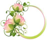 Bloemkader. lotusbloembloem Stock Afbeeldingen