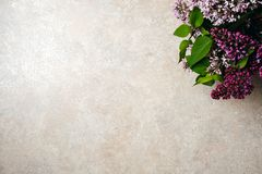 Bloemkader van purpere lilac bos op de concrete achtergrond van de steenoppervlakte Vlak leg, hoogste mening, minimaal stijlconce royalty-vrije stock afbeeldingen