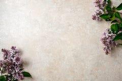 Bloemkader van purpere lilac bos op de concrete achtergrond van de steenoppervlakte Vlak leg, hoogste mening, minimaal stijlconce stock afbeeldingen