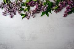 Bloemkader van purpere lilac bos op de concrete achtergrond van de steenoppervlakte Vlak leg, hoogste mening, minimaal stijlconce royalty-vrije stock foto's