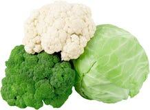 Bloemkool, Broccoli en Kool - beeld stock foto's