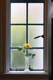 Bloemlandschap aan de vensterkant Stock Fotografie
