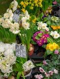 Bloemmarkt met roze, witte en gele bloemen stock foto