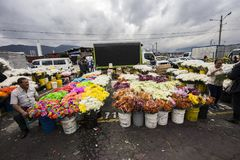 Bloemmarkt in Paloquemao Bogota Colombia Stock Foto