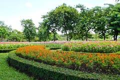Bloempark Royalty-vrije Stock Foto's