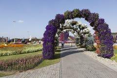 Bloempark in Doubai (het Mirakeltuin van Doubai) Verenigde Arabische emiraten Royalty-vrije Stock Fotografie