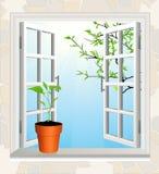 Bloempot op venstervensterbank royalty-vrije illustratie