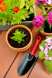 Bloempotten en schoppot in groene tuin Stock Afbeelding