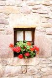 Bloempotten met rode geraniums Royalty-vrije Stock Afbeelding