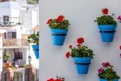 Bloempotten in Mijas Royalty-vrije Stock Fotografie