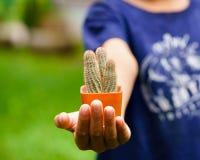 Bloempotten op de kind` s handen Royalty-vrije Stock Afbeelding