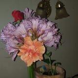 bloemrijk stock afbeelding