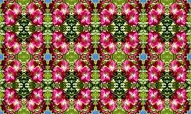 Bloemrijk roze als achtergrond royalty-vrije stock afbeelding