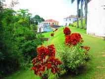 Bloemrijke tuin van een vesting stock foto