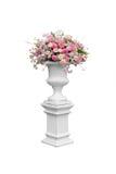 Bloemschaduwen van roze Royalty-vrije Stock Afbeelding