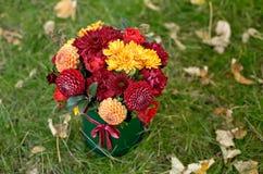 Bloemstuk in een doos, een pot met roze, rood, sinaasappel, marsala voor een meisje als gift met rozen, asters, fresia stock afbeelding