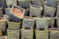 bloemvaas Stock Foto's