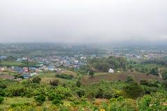 Bloemweide op de Berg met nevel op de achtergrond en de plattelandsmening Stock Fotografie