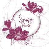 Bloesem van de schets de lineaire magnolia stock illustratie