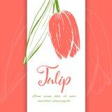 Bloesem van schets de lineaire tulpen vector illustratie