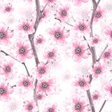 Bloesem Waterverf naadloos bloemenpatroon 1 royalty-vrije illustratie
