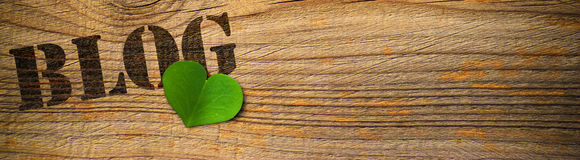 blog φιλικός πράσινος eco Στοκ φωτογραφία με δικαίωμα ελεύθερης χρήσης