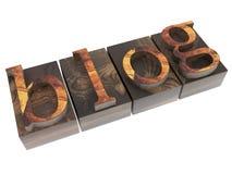 Blog word in vintage wood type Stock Image