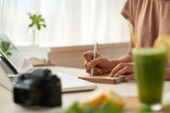 Blogger, der Ideen notiert Lizenzfreies Stockbild
