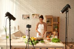 Blogger do alimento imagem de stock