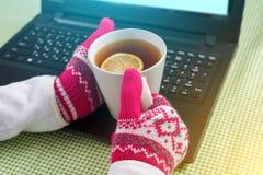Blogger, free lance, immagine del computer portatile di stagione invernale, guanti, bevande calde del fondo Fotografie Stock Libere da Diritti