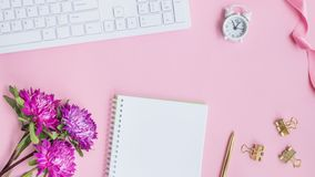 Blogger or freelancer workspace with notebook and pink flowers. On pink background stock photos