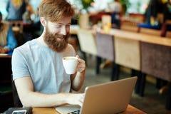 Blogger im Café Stockfoto