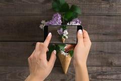 Blogging Werkstattkonzept des Fotografen Übergeben Sie das Halten des Telefons und das Machen des Fotos der Blumen Stockfotos
