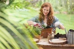 Blogue sobre o equipamento de jardinagem Foto de Stock
