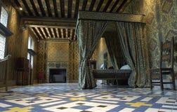 замок blois стоковая фотография