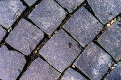 Blok op straat in tuin Royalty-vrije Stock Afbeeldingen