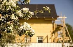 Blokhuis Royalty-vrije Stock Foto