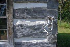 Blokhuis en Witte Doorstane Geweitakken in Oud Wisconsin stock fotografie