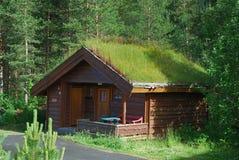 Blokhuis met groen dak in bos. royalty-vrije stock afbeeldingen