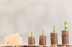 Blokhuismodel en stap van muntstukkenstapels met boom het groeien op bovenkant, de achtergrond van de zolderstijl, geld, besparin royalty-vrije stock afbeeldingen