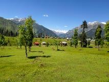Blokhuizen in de vallei en het landschap Royalty-vrije Stock Afbeelding
