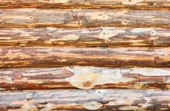 Blokhuizen van veelvoudige logboeken voor huis Stock Foto's