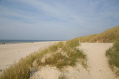 Blokhus beach Royalty Free Stock Photos