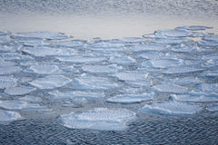 Bloki lód na wybrzeżu Zdjęcie Stock
