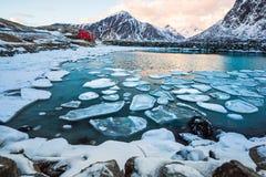 Blokken van ijs in het water Royalty-vrije Stock Afbeeldingen