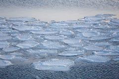 Blokken van ijs op de kust Stock Foto