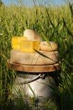 Blokken van kaas op melkurn Stock Afbeeldingen