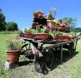 blokkenwagen met vele potten van bloemen in de weide in Th wordt verfraaid dat Royalty-vrije Stock Afbeeldingen